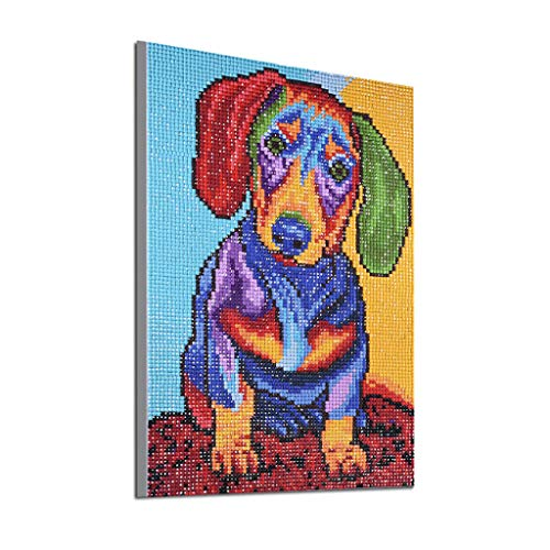 Weird Dog Animals Full Square Drill DIY 5D Visual Diamond Painting Embroidery Cross Crafts Stitch Kit Office Wall Decor of Cinhent, 25 × 35CM, Translucidus Sequins 2019 Modern Gift ()