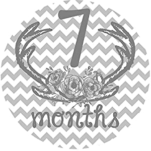 12 Monthly Baby Stickers, Deer Antlers, Flowers, Baby Girl, Baby Belly Stickers, Baby Month Stickers, First Year Stickers Months 1-12, Pink, Grey, Gray, Chevron, Deer Antlers, Girl 8