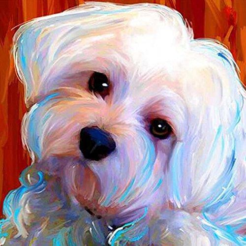 punto croce 5D pittura diamante animali home decor cani 3D strass ricamo mosaico diamante ricamo 24/x 24/cm Full drill Maltese