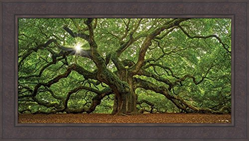 Home Cabin Décor The Tree by Moises Levy 24x42 Southern Angel Oak Charleston SC Spanish Moss Ferns Photograph Framed Art Print Picture ()