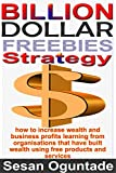 img - for Billion-Dollar Freebies Strategy...Unique and Efficient Small Business Marketing Fundamentals to Grow Your Business book / textbook / text book