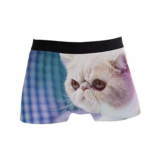 7a2ae47cce22 White Cat Kitty Men's Underwear Soft Polyester Boxer Brief for Men Adult  Teen Children Kids S at Amazon Men's Clothing store: