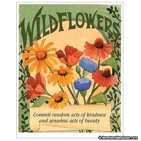Davidu0027s Garden Seeds Flower Seed Favor Packet U0026quot;Random Acts Of  Kindnessu0026quot; ...