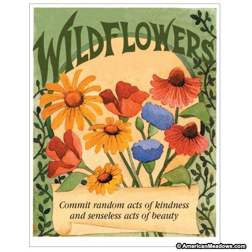 (David's Garden Seeds Flower Seed Favor Packet Random Acts of Kindness FEF (Multi) 20 Packets)