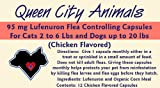 Queen City Animals Flea Controlling Capsules For Dogs Up To 20 Pounds And Cats 2 – 6 Pounds. 12 Monthly 95 mg Lufenuron Capsules Controls Flea Eggs And Larvae For Your Pet For A Full Year. The Same Active Ingredient As the Major National Brand. (For Little Dogs And Cats), My Pet Supplies