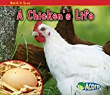 A Chicken's Life, Nancy Dickmann, 1432941488