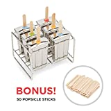 Fox Run 11653 Stainless Steel Mold, 6 Popsicles, Stainless Steel Popsicle Mold