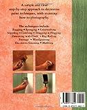 Annie Sloan Decorative Paint Effects: A Practical