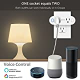 DILISENS Smart Plug Wi-Fi Mini Sockets 15A Timing Switch Energy Monitoring Compatible with Amazon Alexa and IFTTT Google Assistant-Dual Outlets Can Work Individually or in Groups (