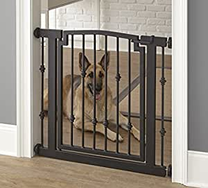 Best Pet Doors For Large Dogs