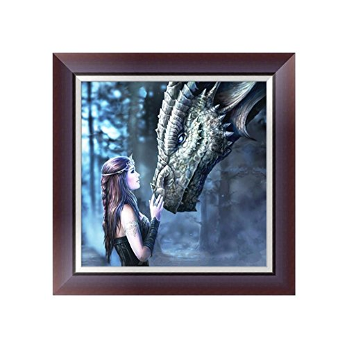 KAYI 5D Diamond Painting Beauty and Dragon Partial-drilled Rhinestone Hand Craft Painting Home (Beauty Dragon)