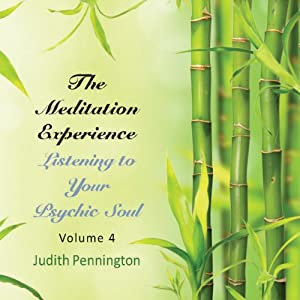 The Meditation Experience, Vol. 4 Speech