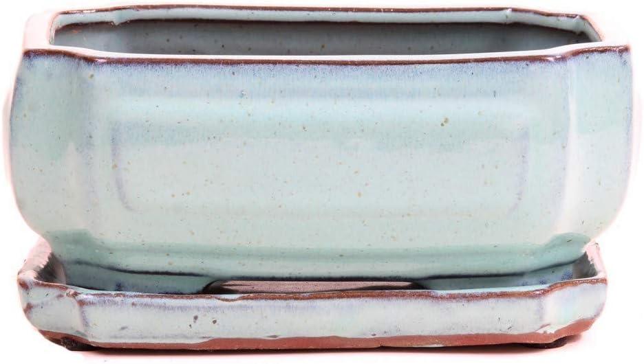 mit Untersetzer 23912 21 x 15 x 8,5 cm Bonsai mintgr/ün Schale eckig