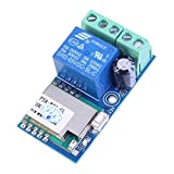 WHDTS WiFi Inching Relay Delay Switch Module Low Power Smart Home Remote Control DC 12V Compatible with iOS Andriod 2G/3G/4G Network