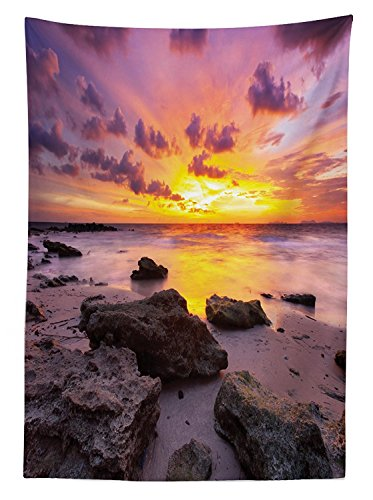 vipsung Tropical Tablecloth Sunset at The Beach Horizon on Island Magical Idyllic Weather Landscape Dining Room Kitchen Rectangular Table Cover Mauve Salmon Lilac