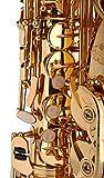 Kaizer Alto Saxophone E Flat Eb Gold Lacquer