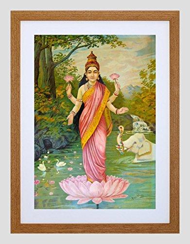 lakshmi pictures - 3