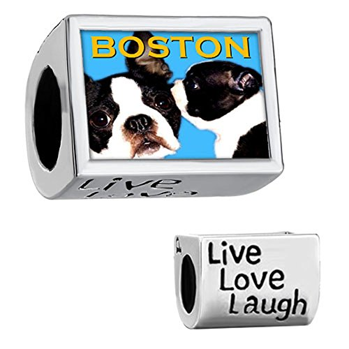 CharmSStory Boston Terrier Dog Silver Plated Charm Live Love Laugh Photo Beads For Bracelets (Pandora Terrier Charm)