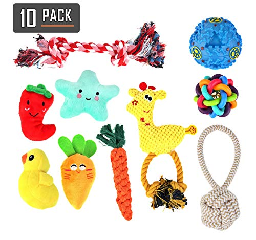 RETRO PUG - Dog Rope Toys - Tough Chew Toy for Puppy - 10-Pack Set for Aggressive Chewers - Perfect for Small Pet and Large Breeds - Includes Ropes, Plush, Treat Balls, Squeaky Toys - Tug Play (Best Toys For Pug Puppies)