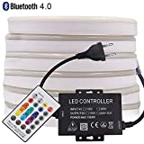 XUNATA LED Neon Light, Bluetooth Remote Control LED Rope Light, AC 110-130V RGB Dimmable Waterproof 5050 60 LED/m Light Strip for Commercial Building, Outdoor Lighting(66ft/20m)