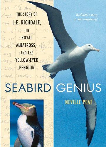 Yellow Eyed Penguin - 2