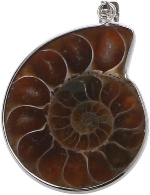 Lamdoo Piedra Natural Amonita Fósiles Concha de Caracol Colgantes Perlas de Piedras Preciosas Sueltas DIY