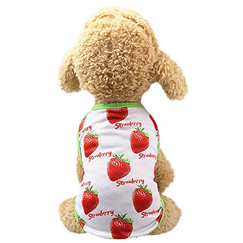 Clothes For Cat Pet Small Dog Doggy Pet Couples Dress Puppy Dog Prince Lovely Pineapple/Strawberry Printing Vest Doggy Apparel Dog Jacket Puppy Coat Dogs Puppy Sweatshirt Outfits (Red, M) -