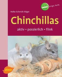 Chinchillas: Aktiv-possierlich-flink