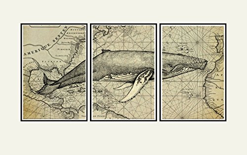 Whale wall art Print, Old map art, nautical decor, cool artwork Vintage Whale engraving superimposed over a Print of an old map of the New ()