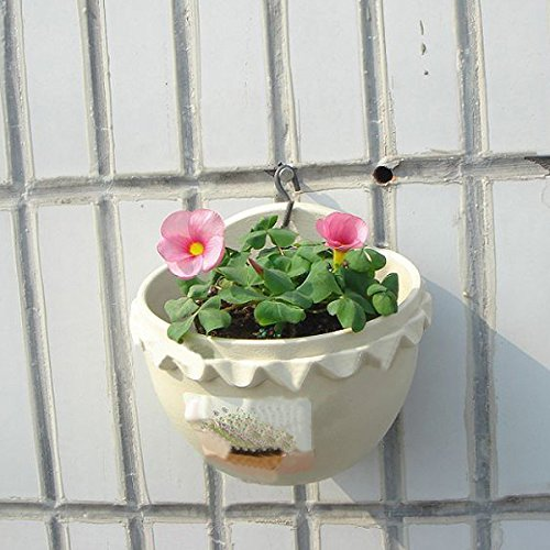 Small Wall Hanging Plastic Flowerpot (Random: Color)