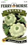 Ferry-Morse Squash - Early White Bush Scallop Seeds