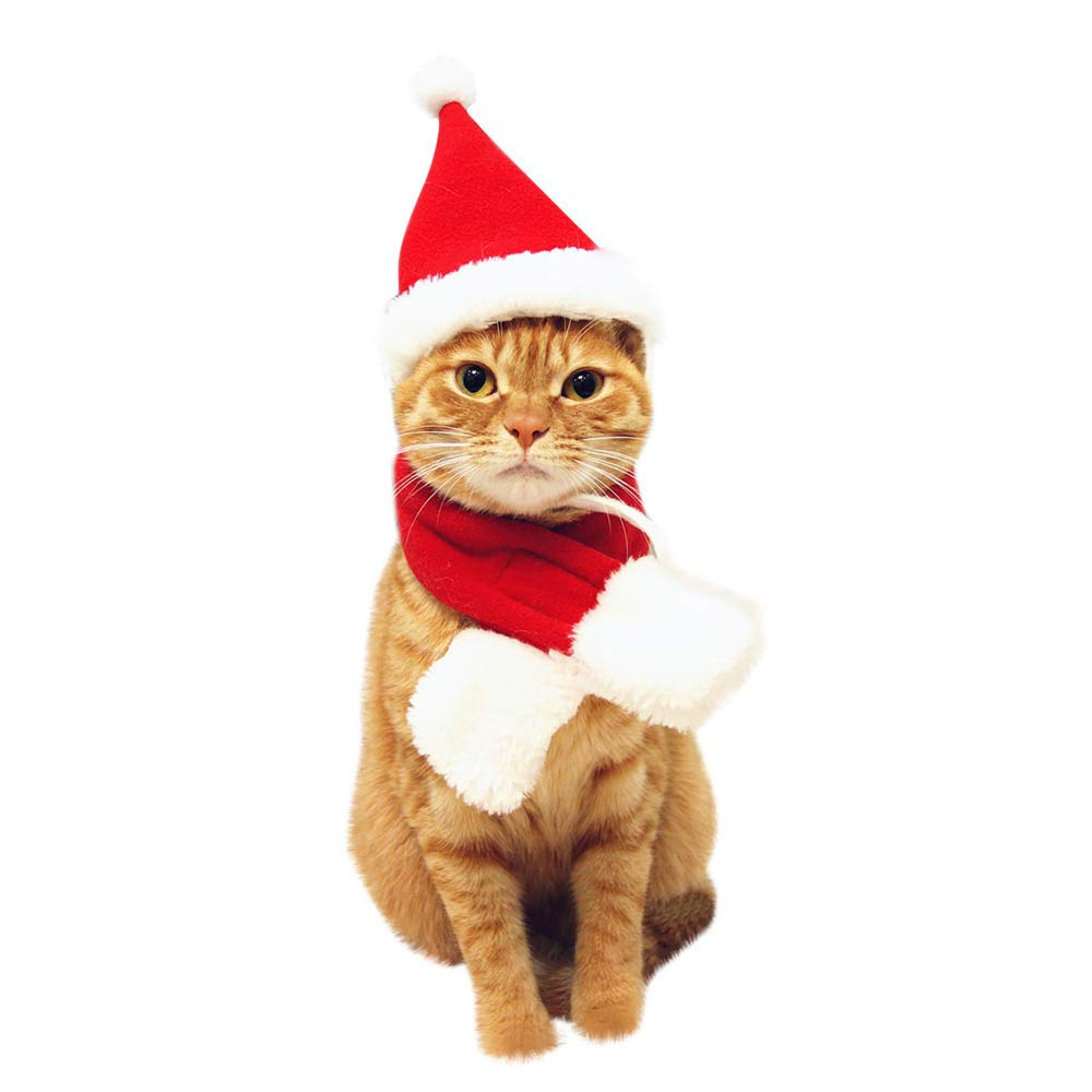 Size:M squarex Pet Cat Dog Hat Red Scarf Christmas Holiday Costume Small Animals Clothes Set or Pet hat or Pet Cloak A:Hat +Scarf