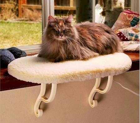 (Cat Furniture - Thermo Kitty Sill)
