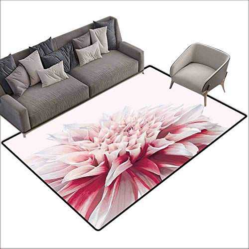 - Entrance Modern Area Rugs Dahlia,Close Up Dahlia Blossom with Red and White Petals One Single Large Flower,Ruby Ivory White 36
