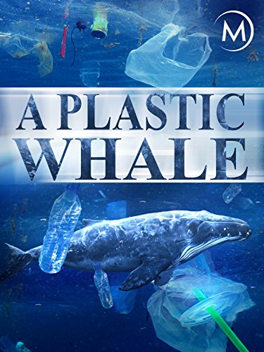 (A Plastic Whale)
