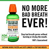 TheraBreath 24-Hour Fresh Breath Dentist Formulated Oral Rinse - Mild Mint Flavor, 16 Ounce (Pack of 2)
