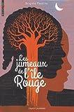 vignette de 'Les jumeaux de l'île rouge (Brigitte Peskine)'