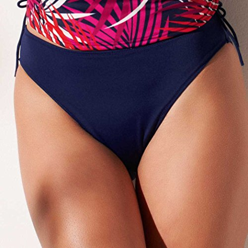 Fantasie Women's New Orleans Classic Brief Navy XL