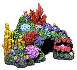 Exotic Environments Australian Barrier Reef with Clam Aquarium Ornament, Ex Small, 6-Inch by 4-Inch by 4-1/2-Inch