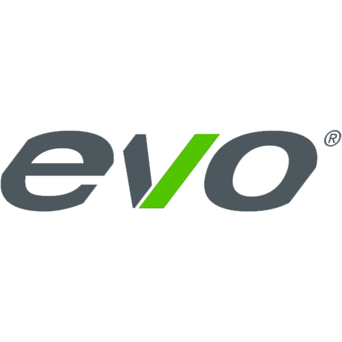 Résultats de recherche d'images pour «evo bike logo»