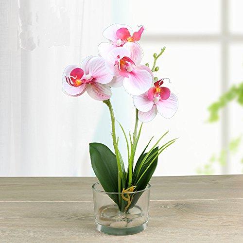 Dynabit Small Handmade Silk Artificial Flower Arrangements with Vase,Vivid Phalaenopsis Orchid Bonsai, Pink