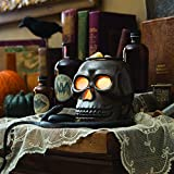 Candle Warmers Etc. Illumination Fragrance