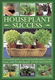 Houseplant Success, Jackie Matthews, 0754826481
