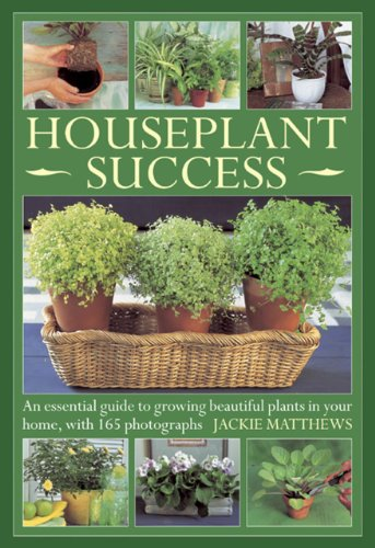 success with house plants - 9