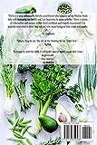 Alkaline Diet Cookbook: Lunch Recipes: Insanely