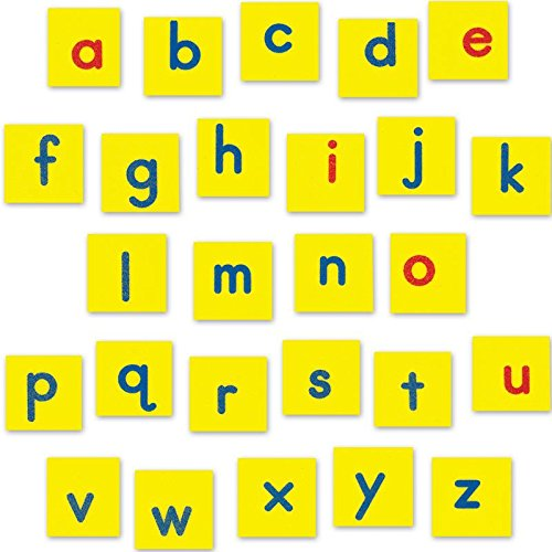 [해외]EZread 마그네틱 폼 소문자 타일 / EZread Magnetic Foam Lowercase Letter Tiles