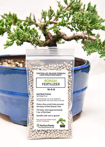 Amazon Com Bonsai Fertilizer Pellets By Perfect Plants 5 Year