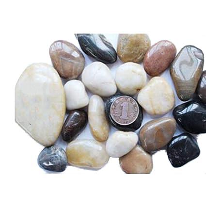 TELLW - Piedras Naturales de Piedra súper Alta con Piedras en Maceta ...