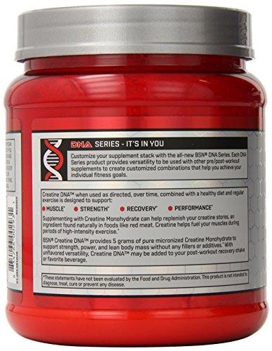 BSN CREATINE DNA - 60 servings
