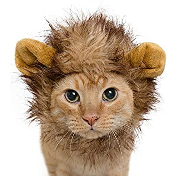 Lion Mane Costume for Cats & Dogs – FREE Feathered Catnip Toy Included – Cute Halloween Pet Costume for Yorkies, Maltese, Puppies, Cats, & Kittens